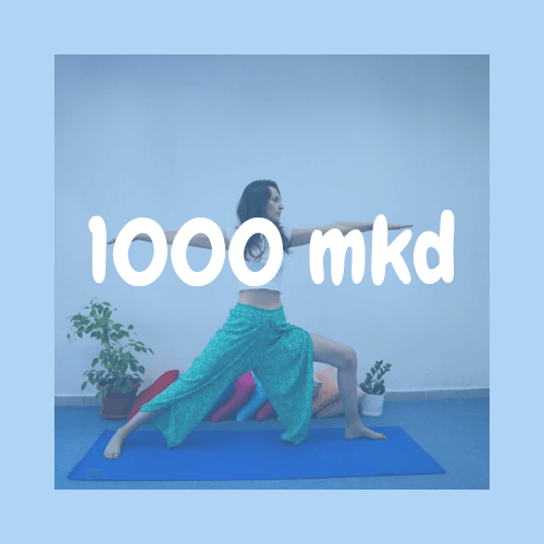 gaya-yoga-skopje-1